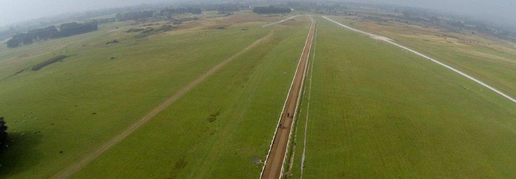 aerial-gallop-crop